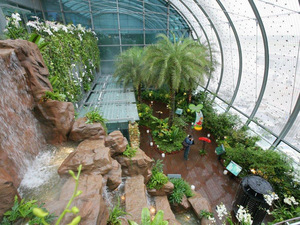 Singapore Changi Airport 5